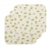 Carter's 3 Count Keep Me Dry Flannel Lap Pads, Lily Pad Frog