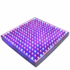 Red & Blue LED Light Therapy for Face & Neck - Anti-Aging Phototherapy 225 LEDs
